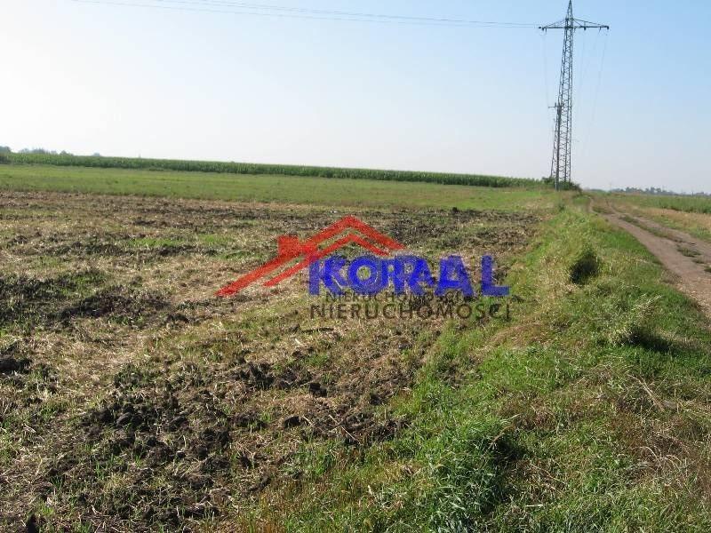 Działka rolna na sprzedaż Żerniki Wrocławskie, Dębowa  3366m2 Foto 4