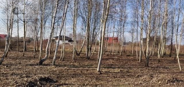 Działka budowlana na sprzedaż Nowe Osiny  779m2 Foto 1