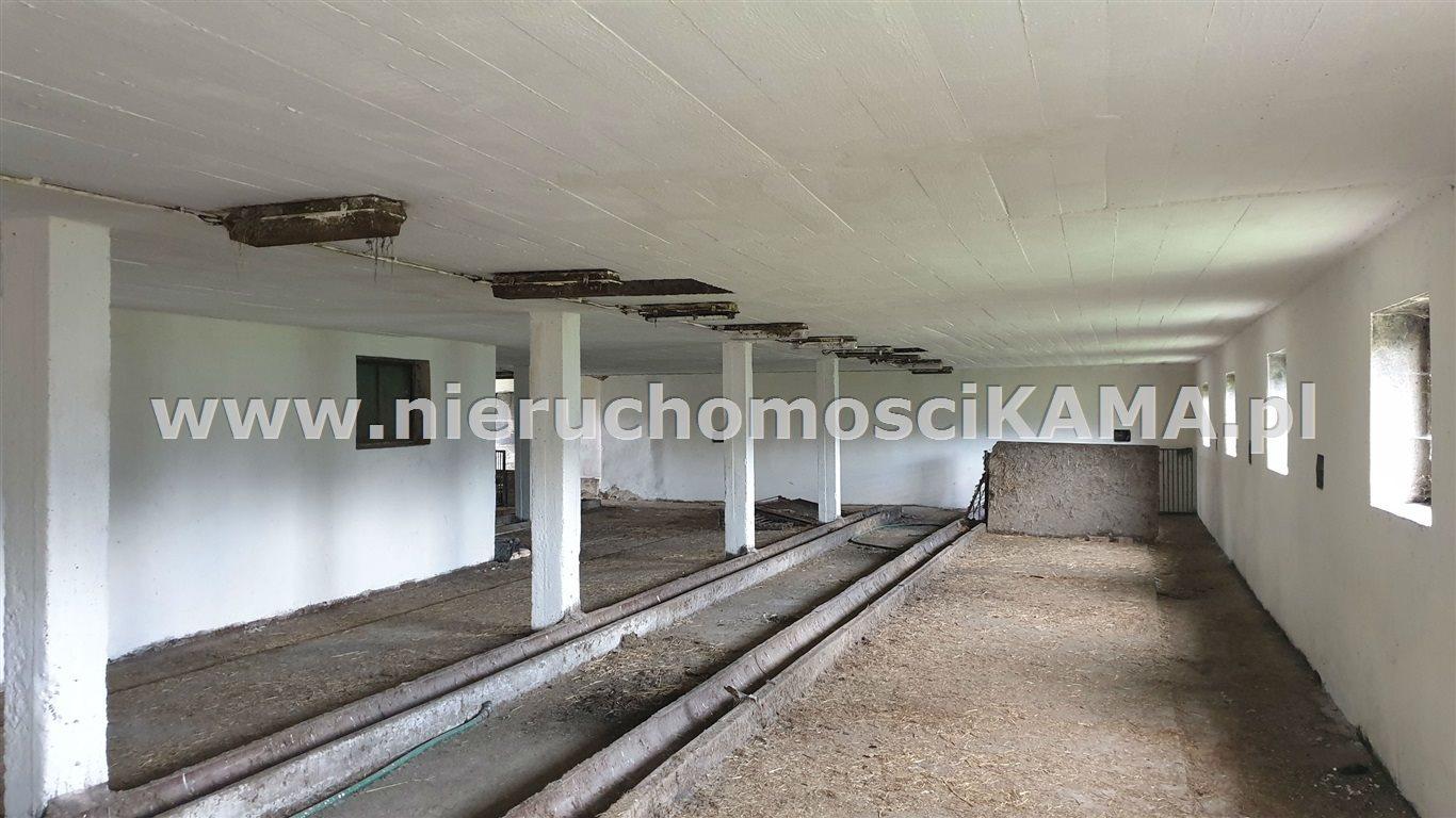 Magazyn na wynajem Czechowice-Dziedzice  210m2 Foto 2