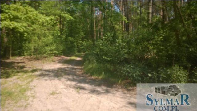 Działka leśna na sprzedaż Góra Kalwaria, Ługówka, Leśna  10488m2 Foto 5