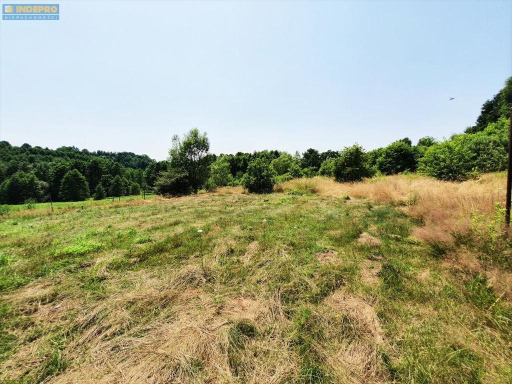 Działka rolna na sprzedaż Kraków  7357m2 Foto 6