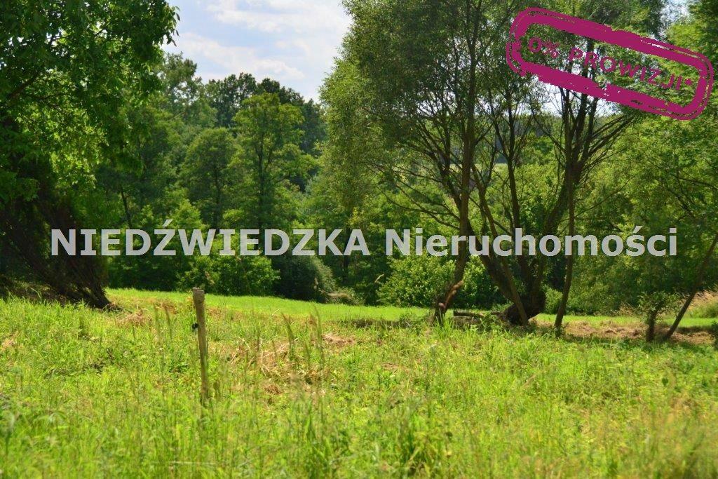 Działka budowlana na sprzedaż Mikołów, Mokre  12507m2 Foto 1