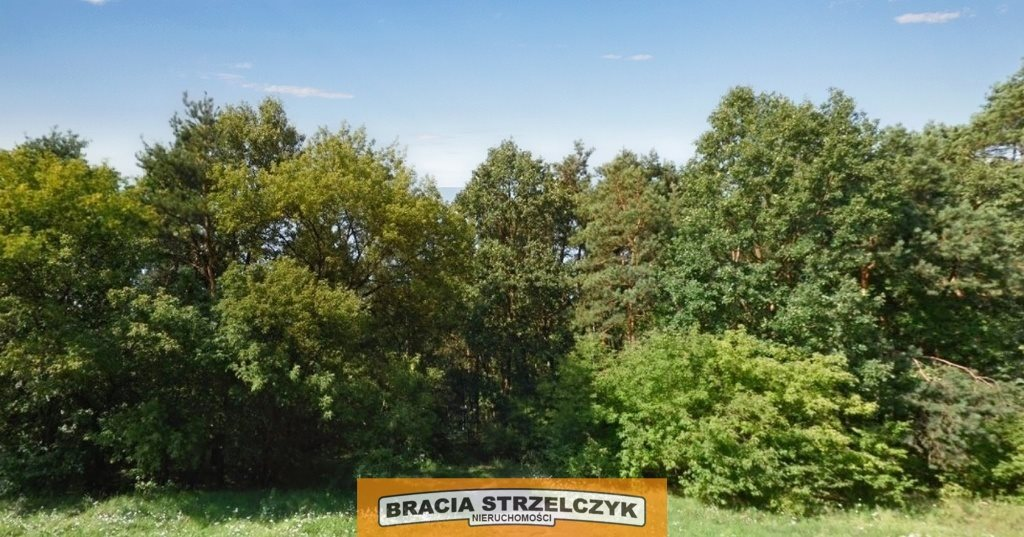 Działka leśna na sprzedaż Warszawa, Wawer, Anin  3063m2 Foto 1