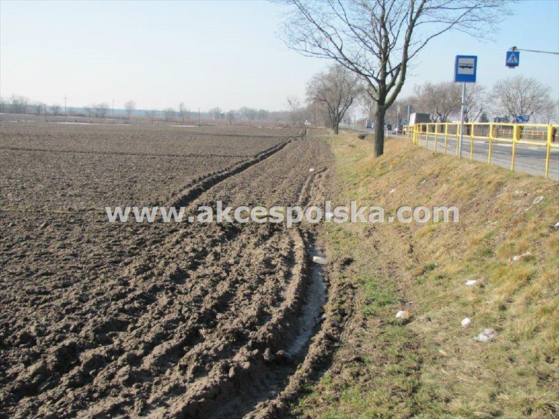 Działka inwestycyjna na sprzedaż Kopytów, Trasa Poznańska  101600m2 Foto 4