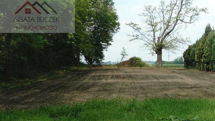 Działka budowlana na sprzedaż Bogusławice, Główna  2000m2 Foto 3