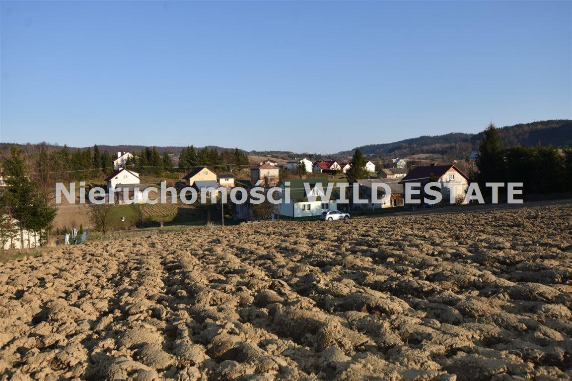 Działka rolna na sprzedaż Lesko, Średnia Wieś  3561m2 Foto 5