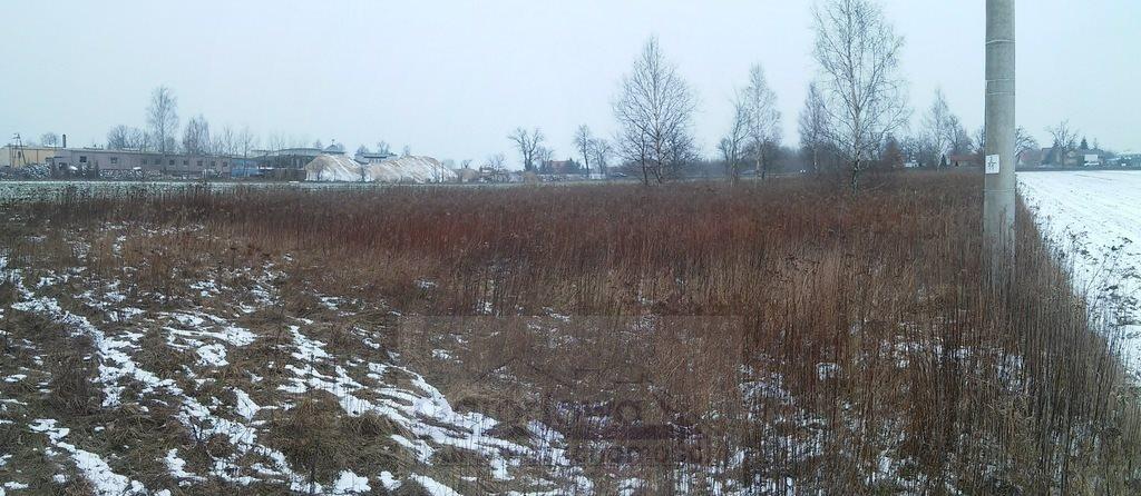 Działka budowlana na sprzedaż Wielgolas Duchnowski  3000m2 Foto 6