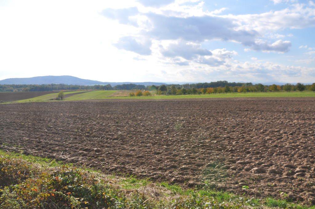 Działka rolna na sprzedaż Mysłaków  29500m2 Foto 10