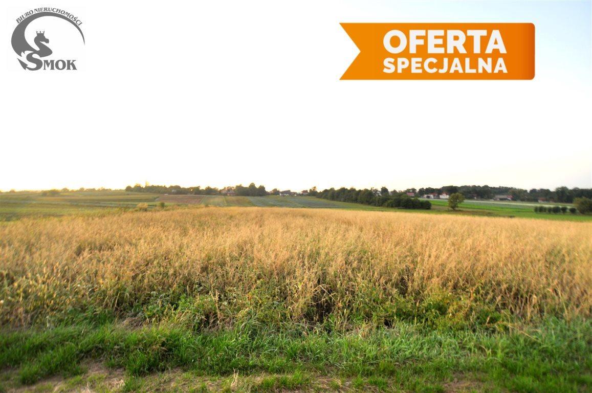 Działka rolna na sprzedaż Kraków, Nowa Huta, Kościelniki  18486m2 Foto 2