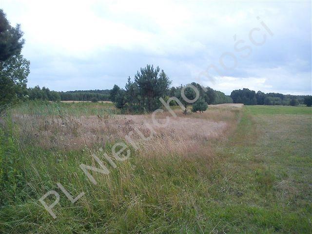 Działka rolna na sprzedaż Stanisławów  18000m2 Foto 9