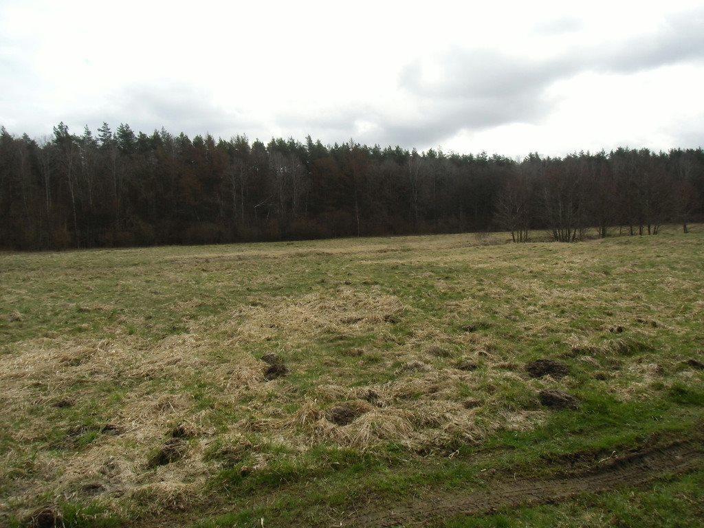 Działka rolna na sprzedaż Tawęcino  136800m2 Foto 3