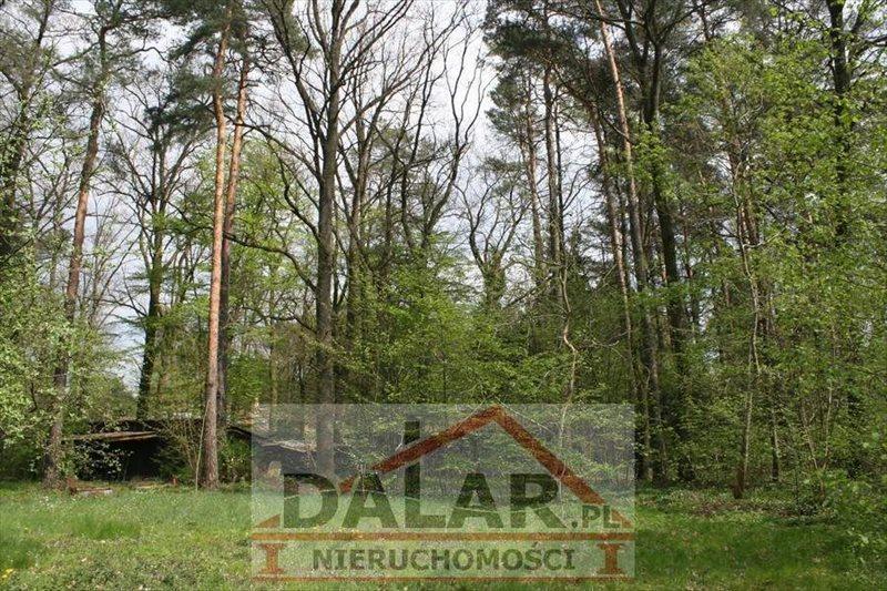 Działka inna na sprzedaż Piaseczno, Zalesie Dolne  4252m2 Foto 4