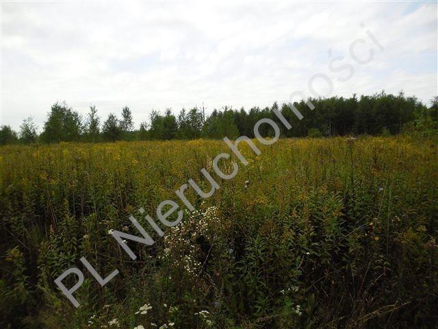 Działka rolna na sprzedaż Olesin  9983m2 Foto 4