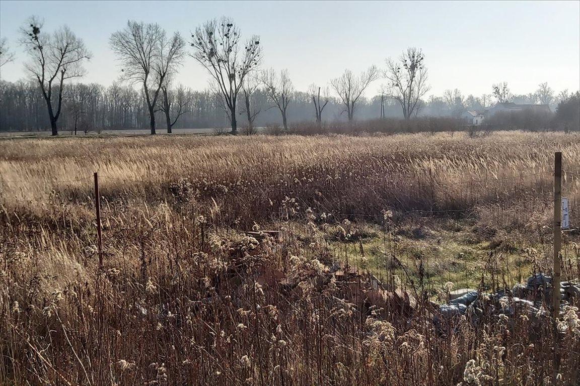 Działka rolna na sprzedaż Gałów, Miękinia  276m2 Foto 3