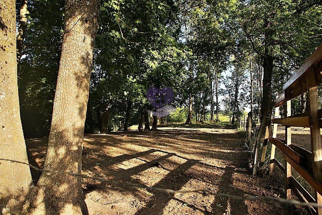 Działka rolna na sprzedaż Suwałki  2610000m2 Foto 12