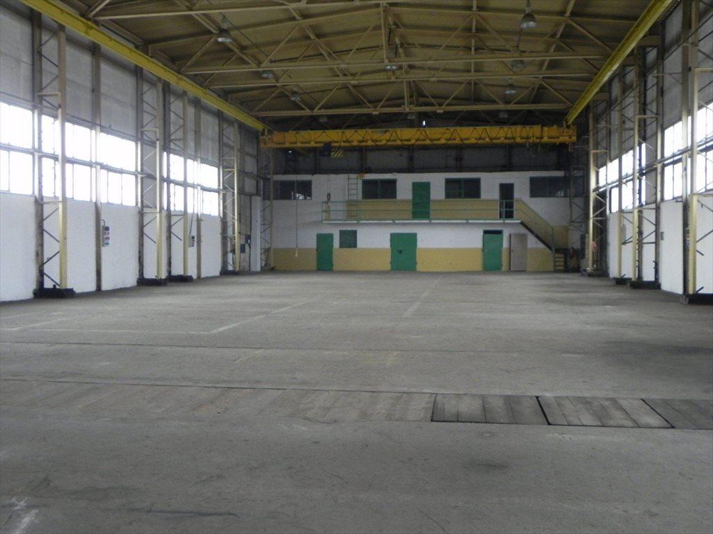 Lokal użytkowy na wynajem Katowice  1049m2 Foto 2