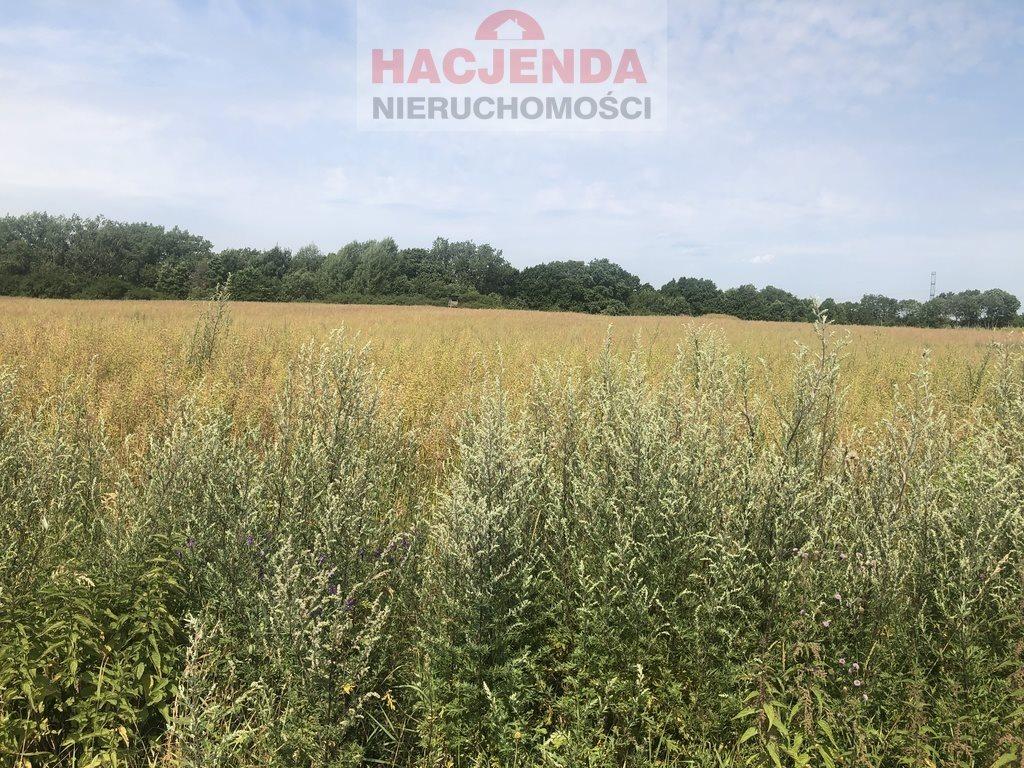 Działka rolna na sprzedaż Szczecin, Skolwin  7218m2 Foto 2