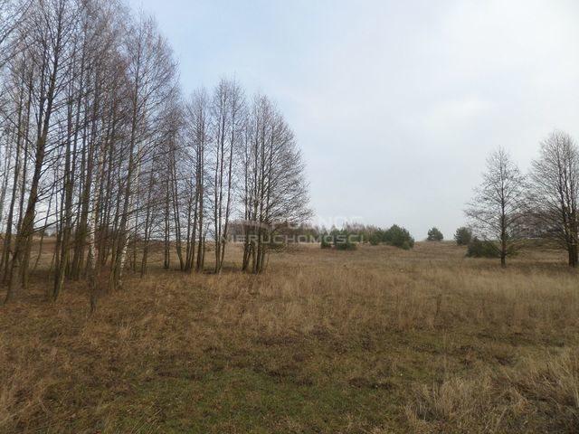 Działka rolna na sprzedaż Ogrodniki Barszczewskie  3076m2 Foto 3