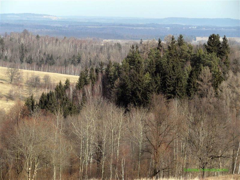 Działka rolna na sprzedaż Lubomierz, Pogórze Izerskie  370000m2 Foto 9