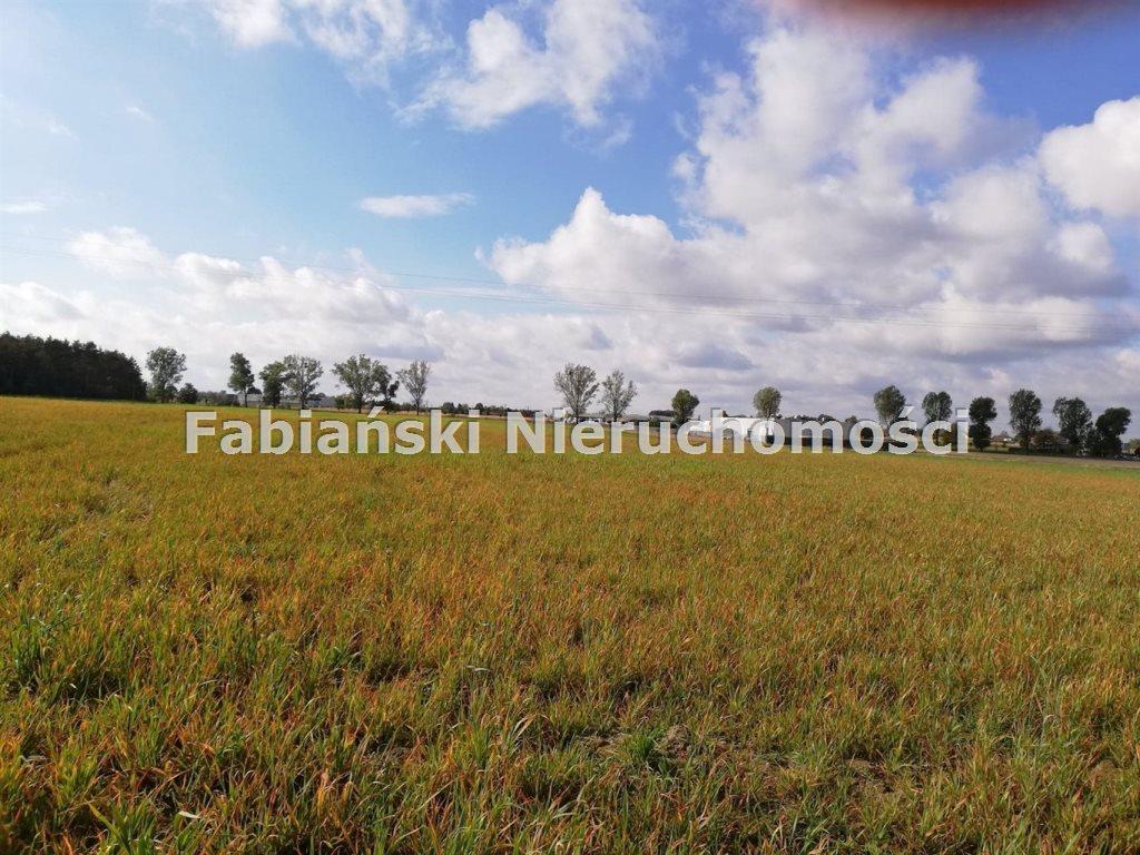 Działka inwestycyjna na sprzedaż Złotkowo  12800m2 Foto 2