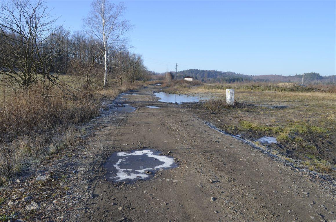 Działka budowlana na sprzedaż Mysłakowice  1000m2 Foto 10