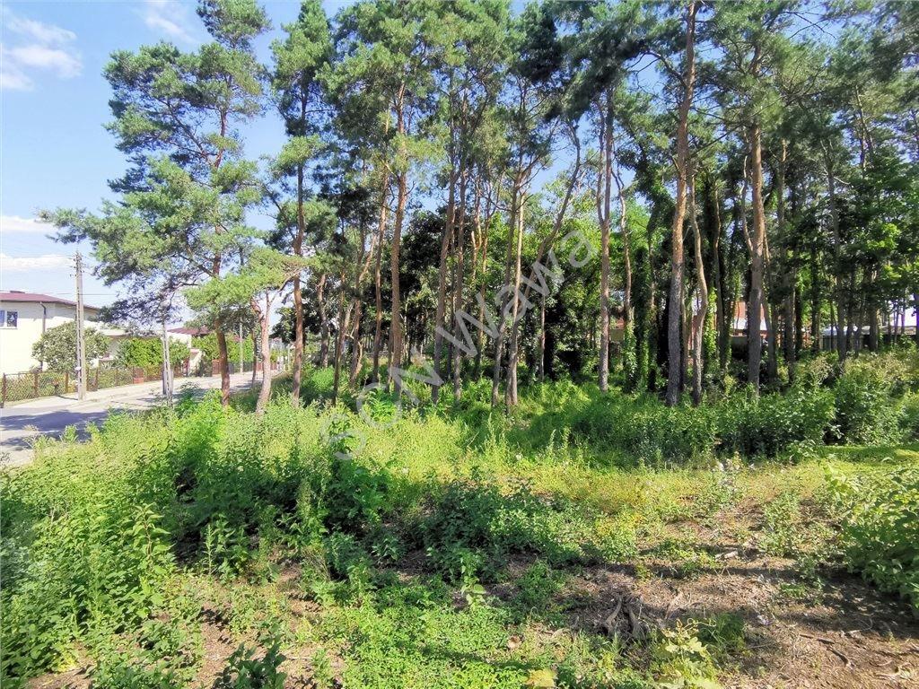 Działka leśna na sprzedaż Legionowo  1808m2 Foto 4