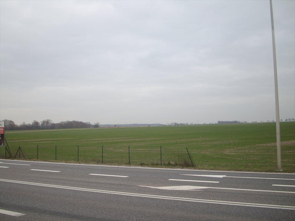 Działka inwestycyjna na sprzedaż Środa Śląska, Droga 94  400000m2 Foto 4