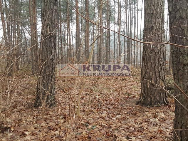 Działka leśna na sprzedaż Warszawa, Wawer, Międzylesie, Al.Dzieci Polskich  3130m2 Foto 3