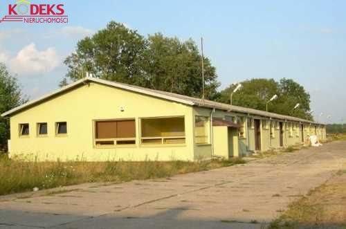 Lokal użytkowy na sprzedaż Wieliszew  982m2 Foto 1