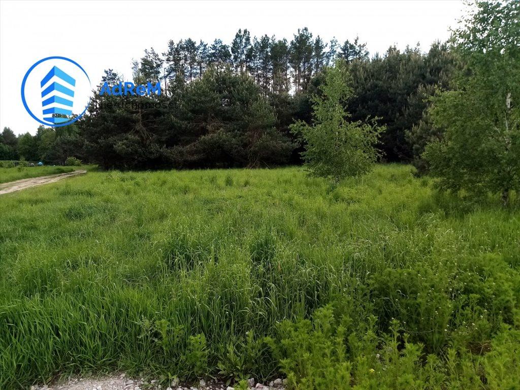 Działka rolna na sprzedaż Iwanówka  3000m2 Foto 1