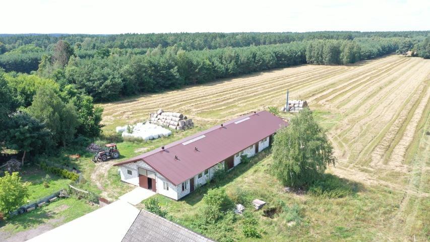 Dom na sprzedaż Nagoszewka Pierwsza  100m2 Foto 9