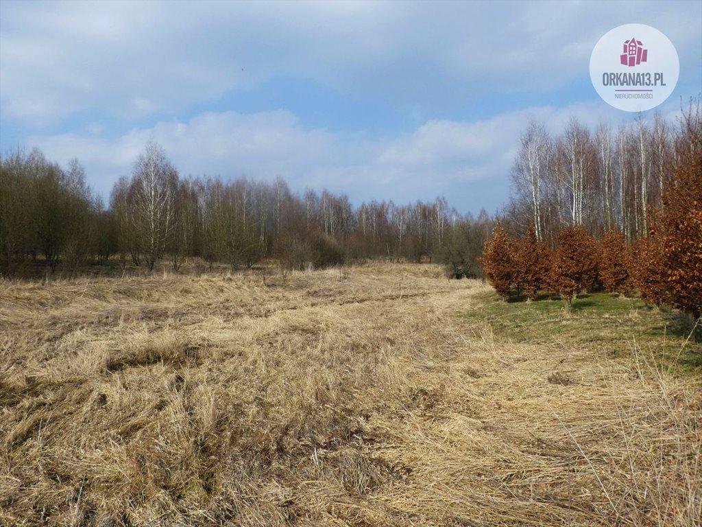 Działka rolna na sprzedaż Radostowo, Radostowo  108251m2 Foto 3
