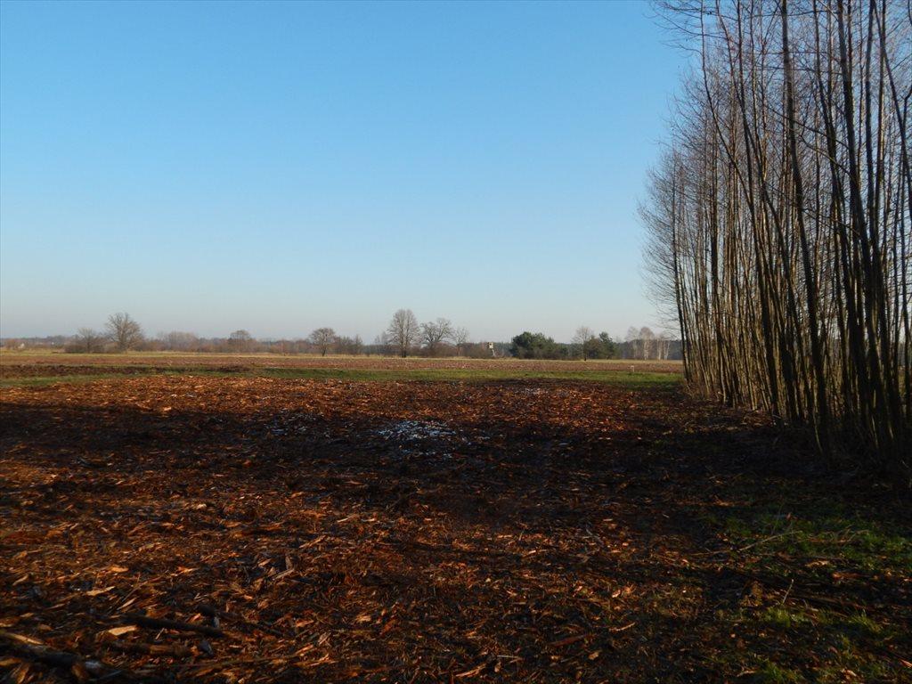 Działka rolna na sprzedaż Pogorzelec  1400m2 Foto 3
