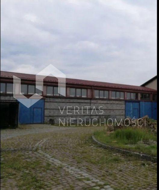 Lokal użytkowy na wynajem Mikołów  720m2 Foto 4