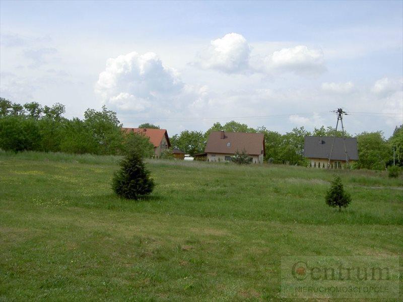 Działka budowlana na sprzedaż Narok, Wiejska  12420m2 Foto 11