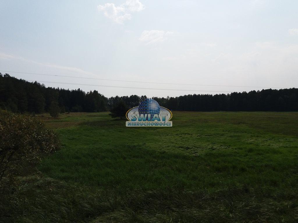 Działka rolna na sprzedaż Dobrzany  11600m2 Foto 6