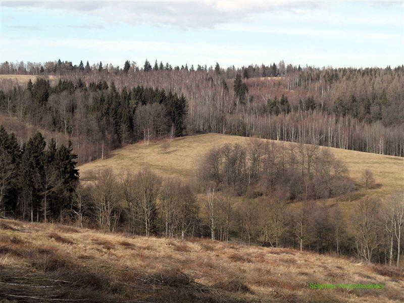 Działka rolna na sprzedaż Lubomierz, Pogórze Izerskie  370000m2 Foto 4