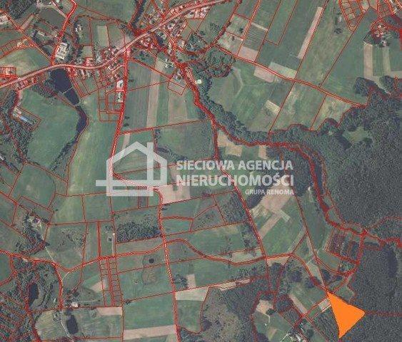 Działka siedliskowa na sprzedaż Donimierz  16315m2 Foto 3