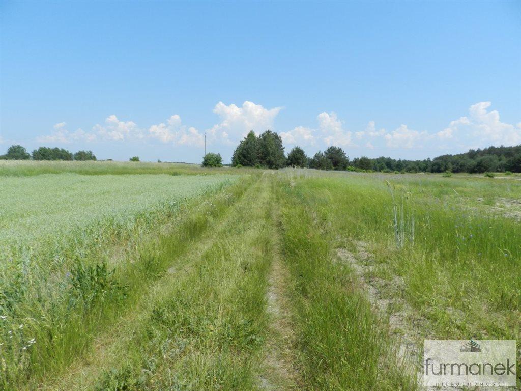 Działka rolna na sprzedaż Gózd Lipiński  11400m2 Foto 6