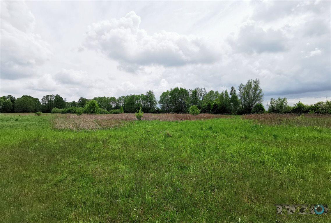 Działka rolna na sprzedaż Warszówka  12200m2 Foto 4