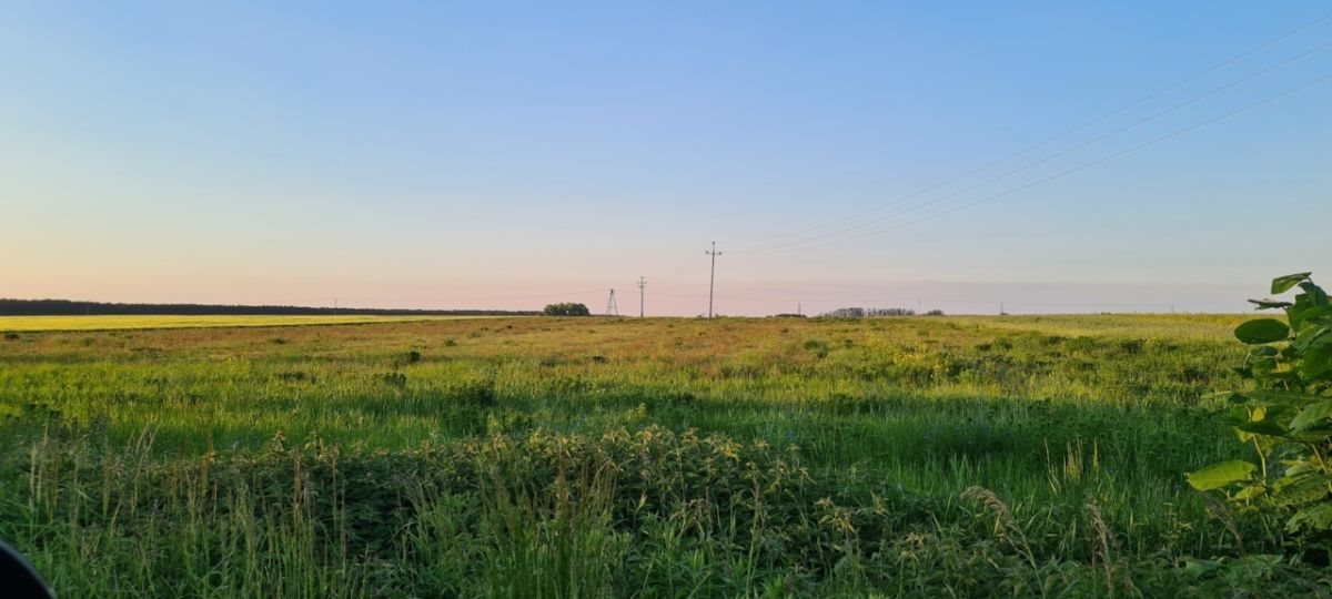 Działka rolna na sprzedaż Ratowice  24400m2 Foto 1