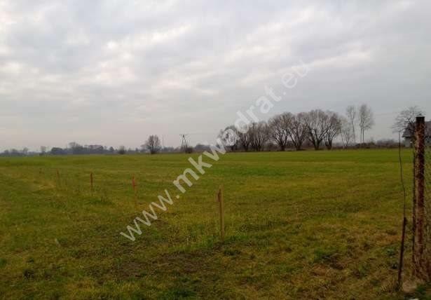 Działka siedliskowa na sprzedaż Chlebnia  21800m2 Foto 2