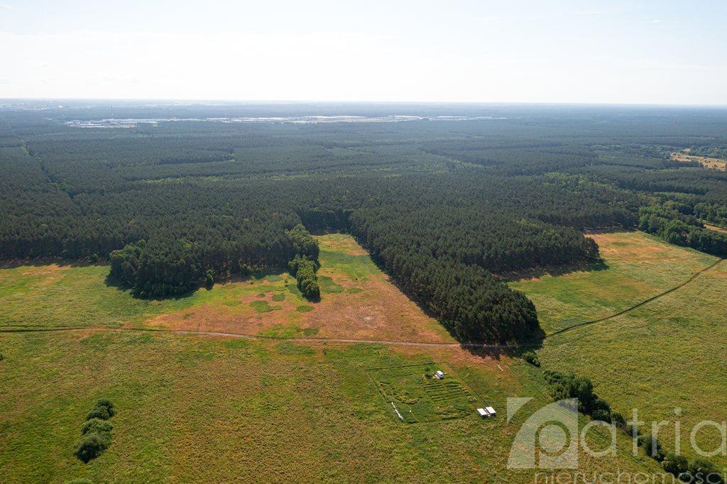Działka rolna na sprzedaż Komarowo  3287m2 Foto 4