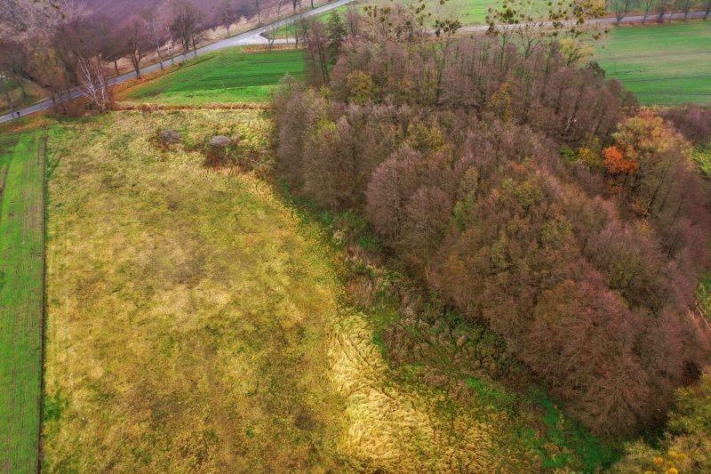 Działka leśna na sprzedaż Pyrzyce, WOJCIECHA BARTOSZA GŁOWACKIEGO  15700m2 Foto 1