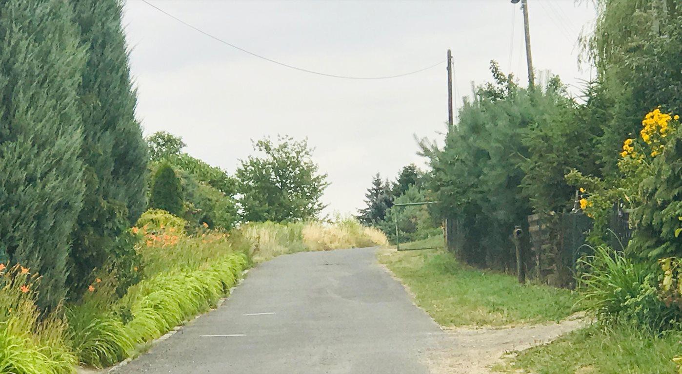 Działka budowlana na sprzedaż Siodłkowice  2640m2 Foto 5