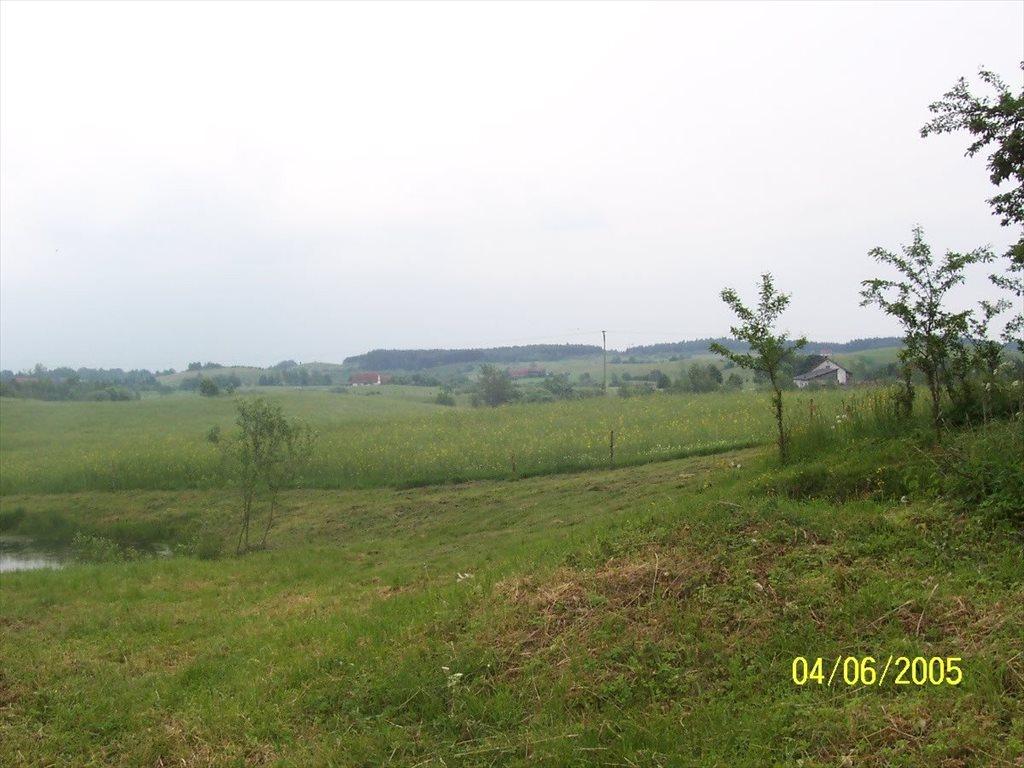 Działka inwestycyjna na sprzedaż Frączki, Frączki  5800m2 Foto 2