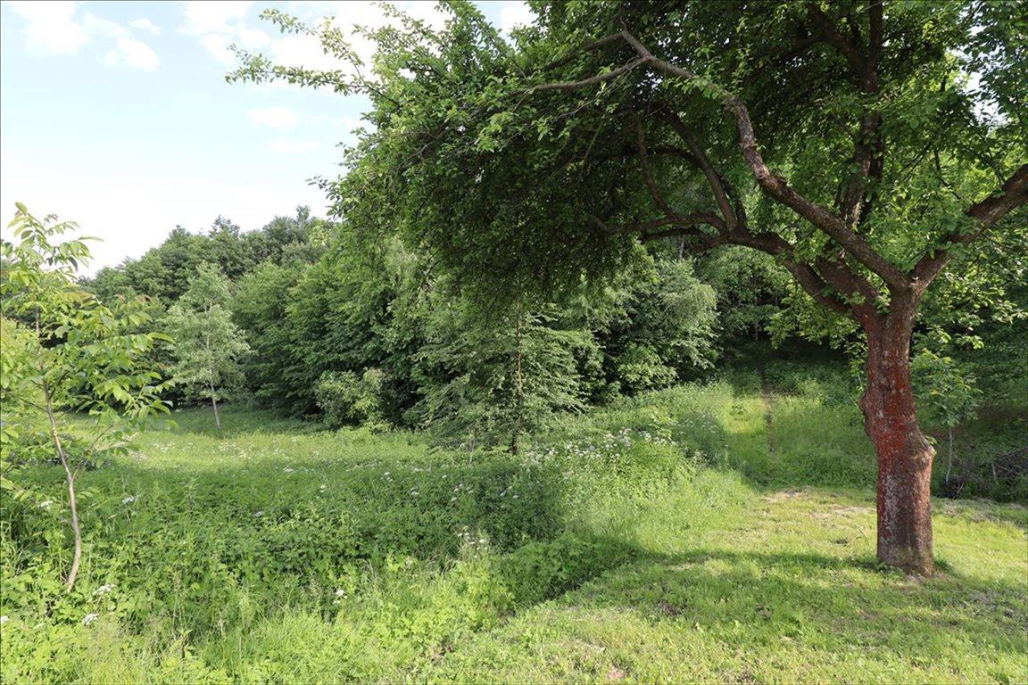 Działka rolna na sprzedaż Wola Zgłobieńska, Boguchwała  7500m2 Foto 1