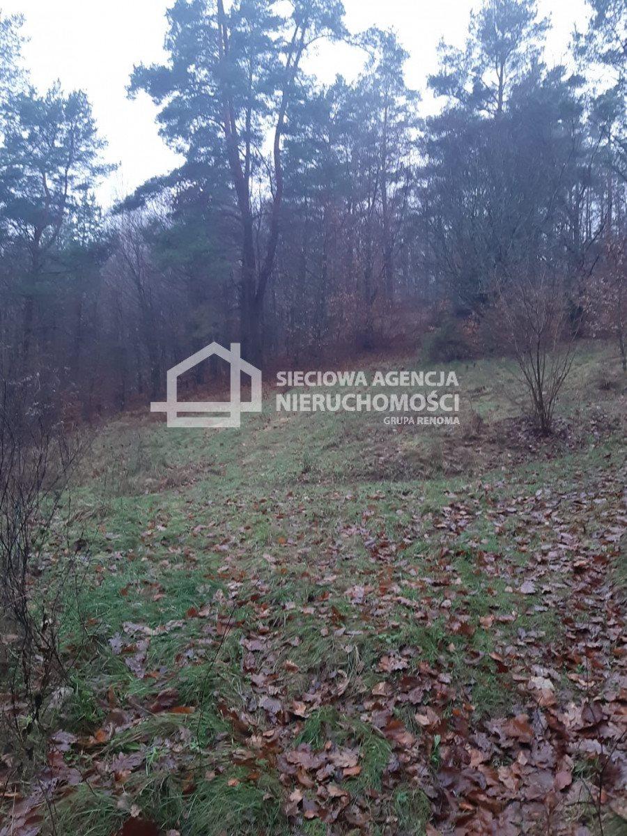 Działka leśna na sprzedaż Nowa Karczma, Kamiony  2605m2 Foto 3
