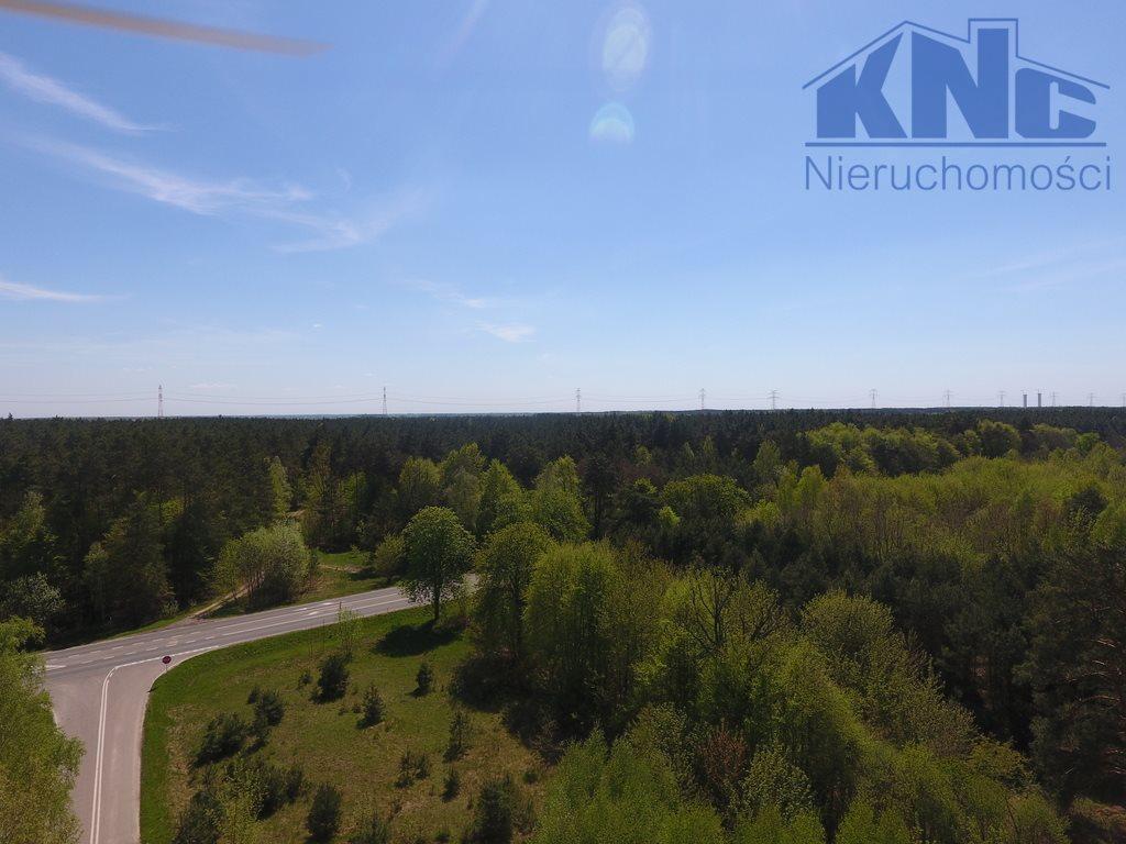 Działka leśna na sprzedaż Laskowiec  4200m2 Foto 2