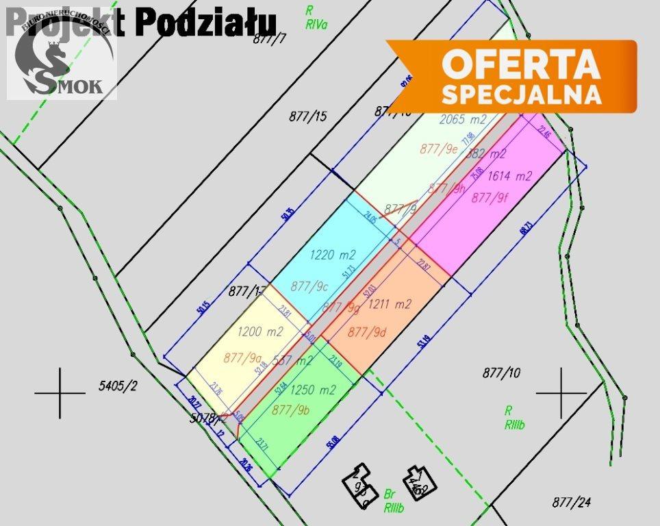 Działka siedliskowa na sprzedaż Izdebnik  2000m2 Foto 6